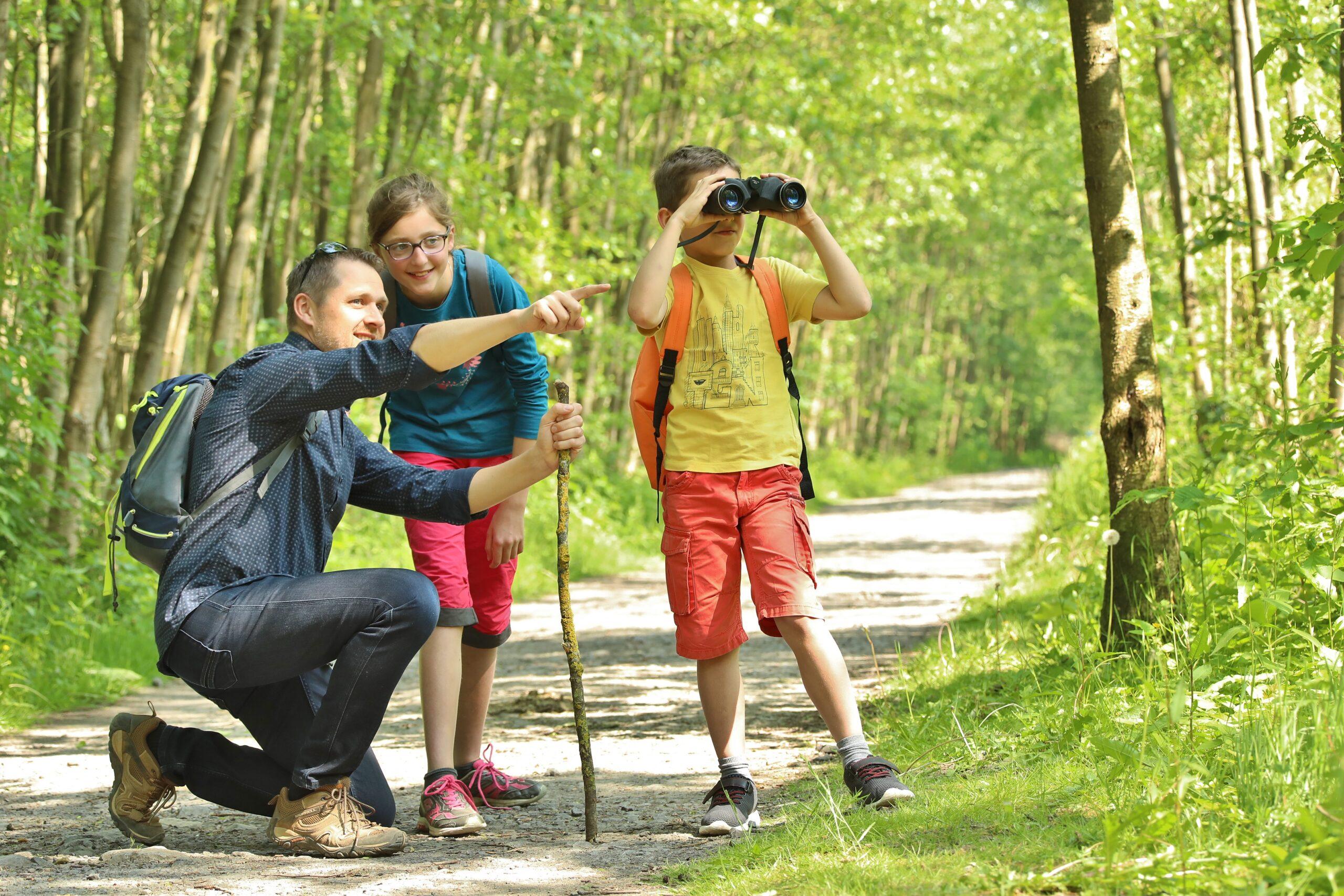 Promenade en famille au bois des 5 tailles à Thumeries. une belle idée de sortie pour cet été dans les Hauts-de-France