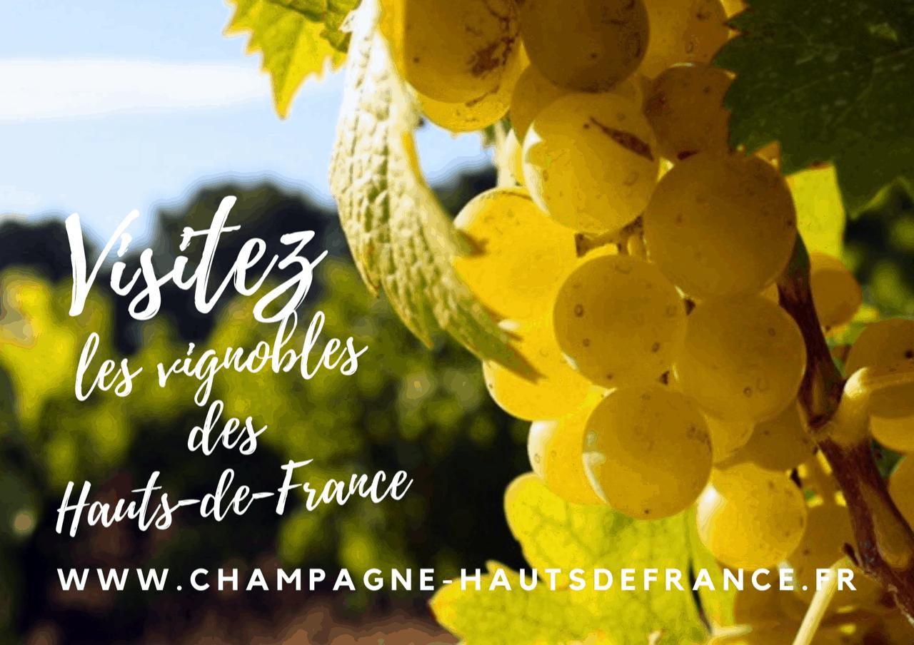 Découvrez le champagne des Hauts-de-France pendant vos vacances et déguster des produits locaux